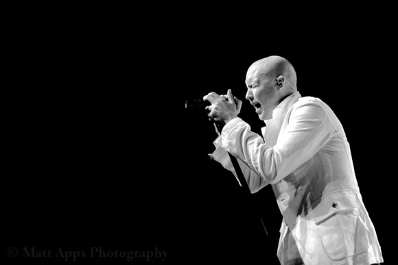 Photo-a-day #350: December 16, 2011 - The Fray